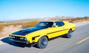 Ford Mustang (Дойные лошади)