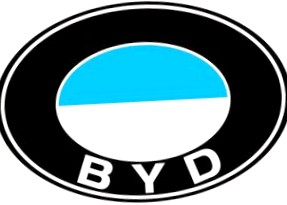 История BYD (БИД)